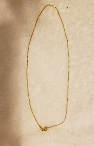 Other - Gold plated necklace